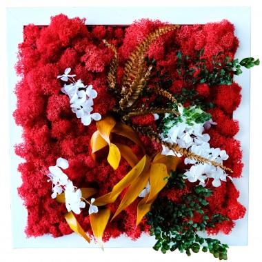"""Фитокартина из стабилизированного мха и растений """"Красный квадрат"""", 25х25 см."""