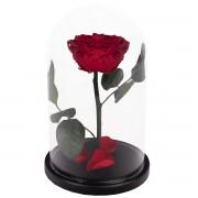 RSGK/2200 Роза в колбе красного цвета