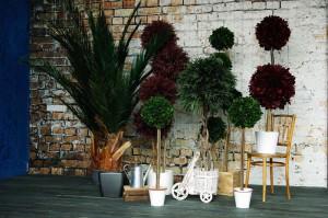 Стабилизированные растения в интерьере офиса
