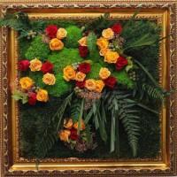 Картины из цветов и мха