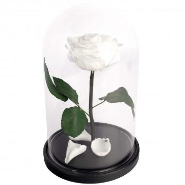 Роза в колбе Premium белая, 29 см.