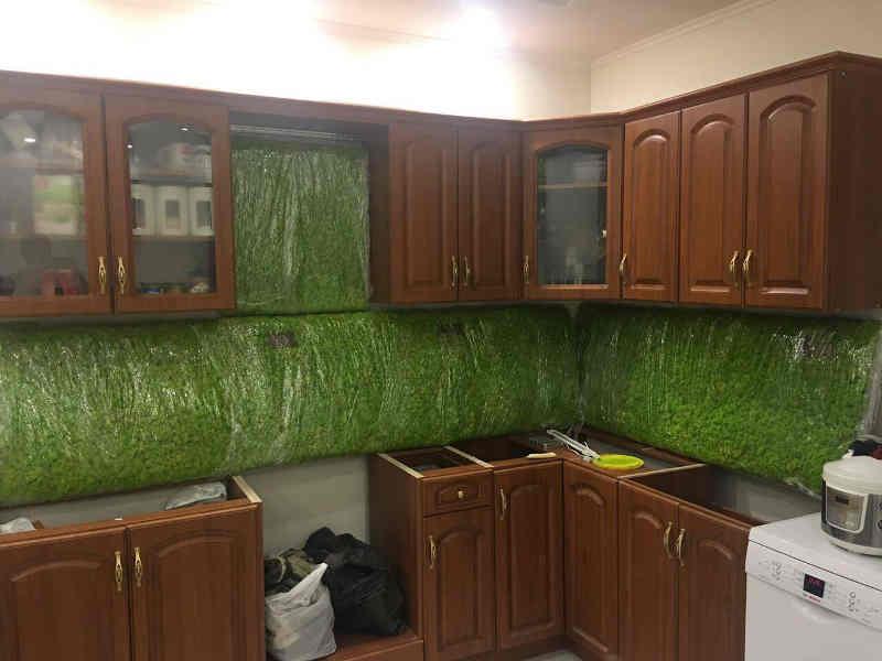 Вертикальное озеленение ягелем на кухне