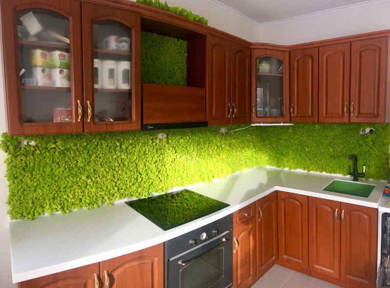 Зеленая стена из стабилизированного ягеля