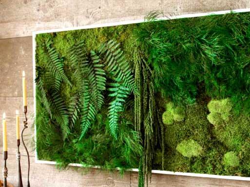 Картина из мха, растений и папоротников